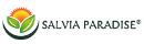 Salvia Paradise