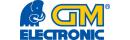 GM electronic