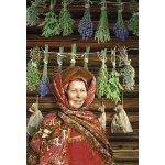 Staroruské bylinářství - Vadim Tschendze