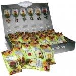 PANGEA TEA Kvetoucí čaj kazeta 30 ks 5 x 6 druhů