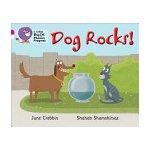 Dog Rocks!