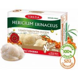 Terezia Company Hericium erinaceus s rakytníkovým olejem 60 kapslí