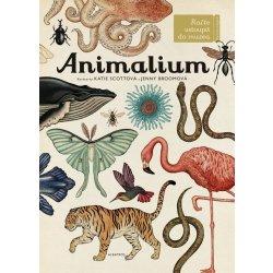 Animalium - Jenny Broom, Katie Scott ilustrátor