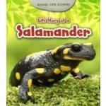 Life Story of a Salamander - Guillain Charlotte