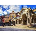 Karlovy Vary – wellness a relaxace v centru lázní vč. procedur 4 dny / 3 noci, 1 os., snídaně