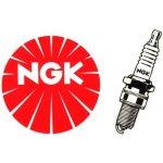 Zapalovací svíčka NGK-DPR8EA-9