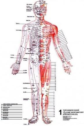 Akupunkturni Body Mudr R Ruzicka Csc Od 350 Kc Heureka Cz