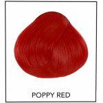 Directions 03 Poppy Red 89 ml