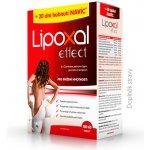 Lipoxal Effect 240 tbl.