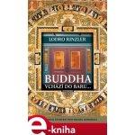 Buddha vchází do baru. Průvodce životem pro novou generaci - Lodro Rinzler e-kniha
