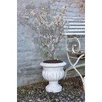 Jeanne d'Arc Living Květináč Fibercement 32 cm, béžová barva, krémová barva, beton