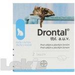 Drontal Plus flavour a.u.v. tbl.1x2