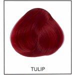 Directions 01 Tulip 89 ml