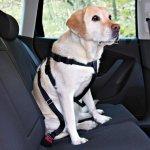 Trixie Postroj pes Bezpečnostní do auta M 50-70cm