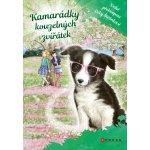 Kamarádky kouzelných zvířátek 3 - Velké překvapení Evky Štětinkové - Meadows Daisy