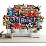 Coloriqa fototapeta Graffiti 3528 Materiál: Vliesová tapeta, Rozměr: 312 x 219 cm XXL