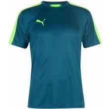 0f715a89d1b Puma Evo Training T Shirt Mens Lagoon Green