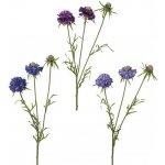 Květina HLAVÁČ H62 A/3 fialová, Sia