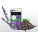 Health Link Bio Raw Chia semínka 250 g