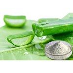 DiatomPlus Aloe Vera sušená šťáva veganske kapsle 200:1 60 ks