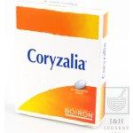 Coryzalia por.tbl.obd.40