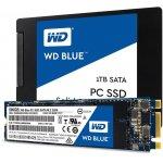 Western Digital 1TB, WDS100T1B0B