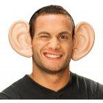 Obří uši na sponě