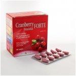 Cranberry Brusinka Forte 90 tablet
