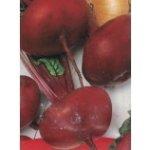 Řepa červená (Beta vulgaris var. vulgaris) odrůda Plato de Egipto - 2 g semen