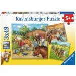 Ravensburger Koňská farma 3x49 dílků