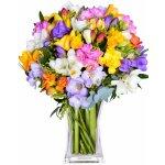 Rozvoz květin: barevné frézie