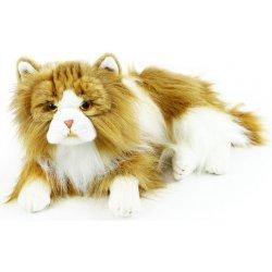 Velké kohouty dospívající kočička