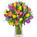 Rozvoz květin: Tulipány