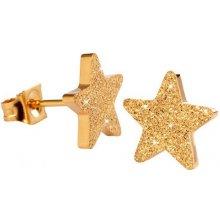 Troli Třpytivé pozlacené náušnice z oceli Hvězdičky KE-008 KE-008 gold 632e7eb3eed
