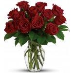 Růže Red Naomi