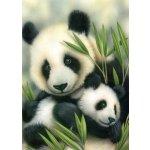 Malování podle čísel Malování olejovými pastely Pandy