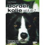 Border kolie - Carol Price