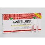 Gestil Pantesalmina tonikum rozjasňující pro oslabené vlasy (Restorative Treatement) 12 x 15 ml