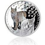 Česká mincovna Stříbrná mince Ohrožená příroda Rys ostrovid proof 16 g