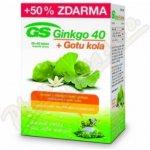 GreenSwan Ginkgo 40 + Gotu kola 120 tbl.
