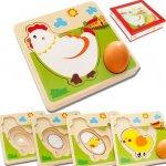 Montessori B314 3D Puzzle vývojová stádia - kuře