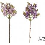 Květina ŠEŘÍK A/2 H82 růžová/fialová, Sia
