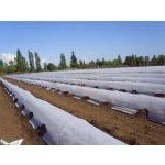 AGROTEX Zakrývací netkaná textilie 17g/m² 1,6x100m