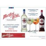 Martini 2 x 1 l