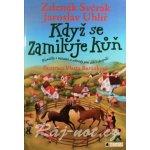 Když se zamiluje kůň - Písničky s notami a akordy pro děti i dopělé - Svěrák Zdeněk