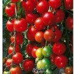 Rajče tyčkové rybízové červené Idyll - semena rajčat 0,2 g, 50 ks S0131