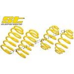 ST suspensions Sportovní pružiny Audi S5 (B8) Coupé 3.0TFSi, 4.2 V8, snížení 15/10mm