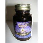 HealthForce Nutritionals Healthforce Spirulina Azteka Bio 20 g