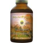 Healthforce MacaForce Lucuma Spice Maca 400 g
