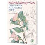 Královské zahrady v Kew Omalovánky rozkvetlých květin